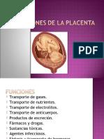 funcionesdelaplacenta-131012210744-phpapp01
