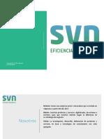 Presentacion Svn Spa