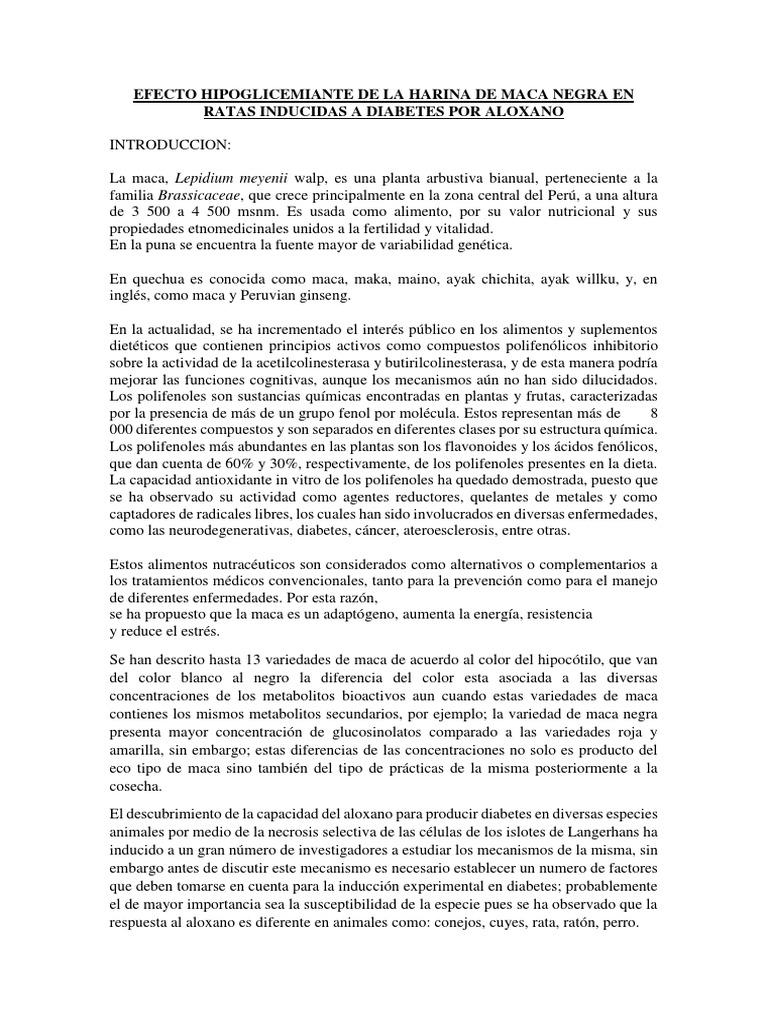 diabetes inducida por aloxano en conejos pdf