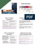 chida 1 .pdf