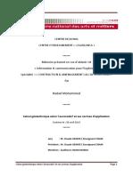rapport exposé-.docx