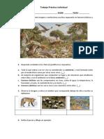 Evaluacion de Ciencias Naturales 6°