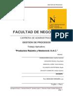 Gestión de Procesos RAZZETO.docx