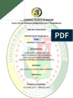 PROYECTO FIN DE CICLO.docx
