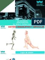 2. Sistema Esqueletico y Articular Unw-Enf. 2018-II