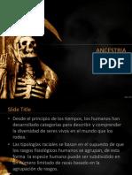 ancestria.pptx