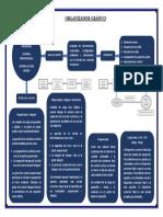 1.- Organizador Gráfico.docx