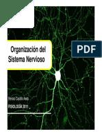 Neurocs v Sn Gral