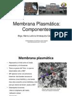Membrana Plasmática I