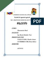 Pil Cuyo