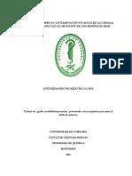 PROPUESTA JOSE RICARDO 2018 QUIMICA.docx
