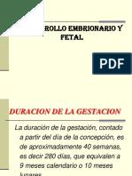 Proceso Embrionario