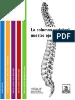 Libro - Ejercicio columna vertebral