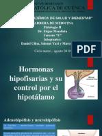 Trabajo de Fisiologia-Hipofisis.pptx