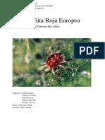 Arañita roja Europea .docx