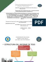 DIAPOSTIVAS PILAR ENERO 2018.pptx