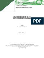 Fase 4 Modelación Ambiental