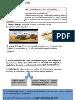 PPT Diario Mural 7ºB (1)