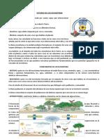 ESTUDIO DE LOS ECOSISTEMA.docx