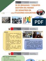 BRIGADA DE GRD-Para II.EE 2019.pdf