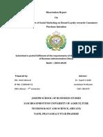 Dissertation Amit final.docx