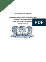 LEGALIZACION DE LA MARIHUANA (KarLa De Iglesias).docx