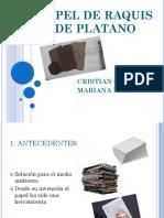 papel de raquiz.pptx