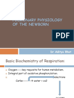 Pulmonary Physiology of the Newborn