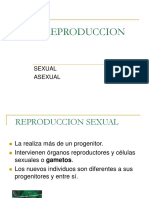 Reproduccion Sexual y Asexual Corr
