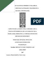 Meylin_Vasquez_tesis_Lomas_VMT.pdf