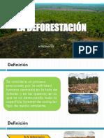 La Deforestación - Diapositivas Expo