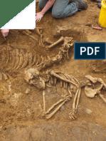 Morminte Cu Schelete de Cai La Populatiile Turanice Tirzii Din Spatiul Carpato Nistrean