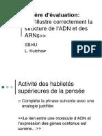 La Structure de Adn Arn
