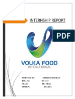 New Report of Volka.docx