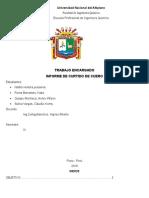 INFORME-DE-CUEROS.docx