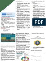 LINEAMIENTOS DE POLITICA TRTIPTICO.docx