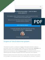Www Kenhub Com en Library Anatomy Endocrine System