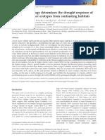 Haworth_et_al-2017-GCB_Bioenergy.pdf