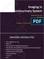 Imaging in Genitourinary System
