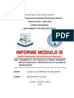 INFORME MICKI MODULO III.docx