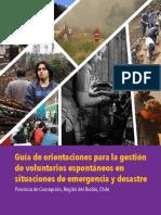 Plan VEs Concepción LR (1).pdf