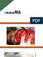 traumareport (1).pptx