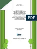 Entrega proyecto 1 (2).docx