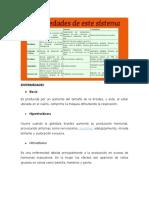 ENFERMEDADES SISTEMA ENDOCRINO.docx