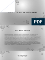 Present as i ppt lives cycle malaria of parasite
