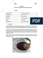 INFORME ESTADO DE AGUA CORONEL (1).docx
