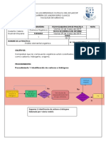 Practica 3_ Analisis Organico Elemental 1 (1)