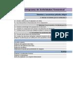 Cronograma semestral - IEC