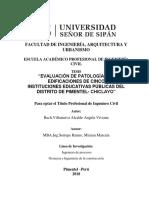 Villanueva Alcalde Angela Viviana PATOLOGIA.pdf