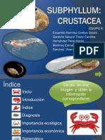 PresentaciónSubphyllumCrustacea 2013.pdf